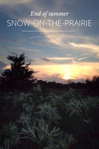 SNOW-ON-THE-PRAIRIE End of summer