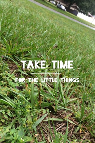 Take Time For the little things