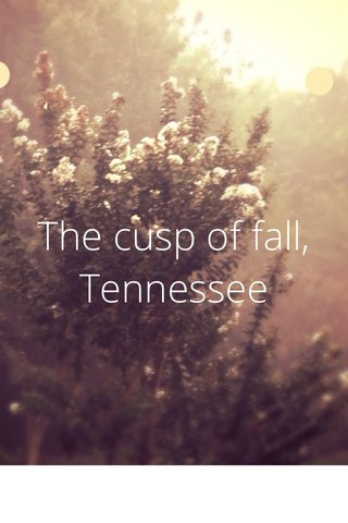 The cusp of fall, Tennessee