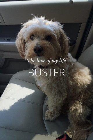BUSTER The love of my life