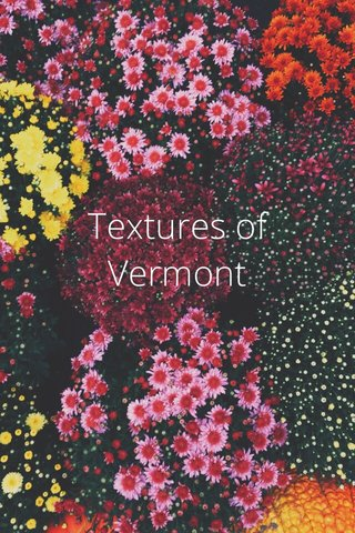 Textures of Vermont