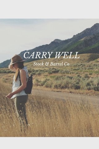 CARRY WELL Stock & Barrel Co