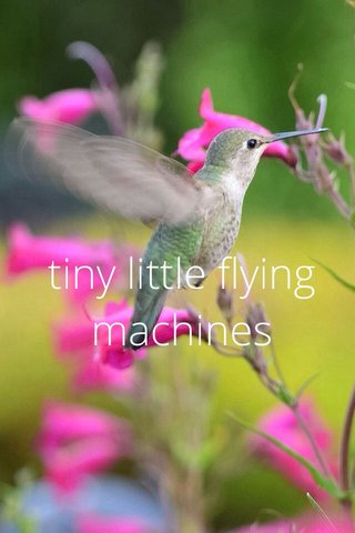 tiny little flying machines
