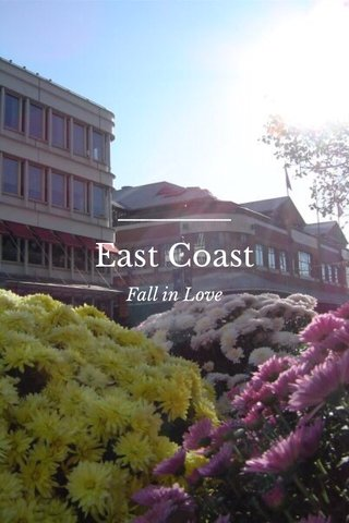 East Coast Fall in Love