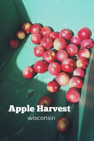 Apple Harvest wisconsin