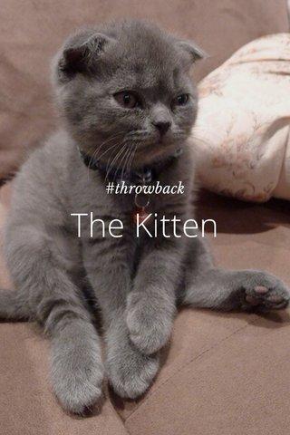 The Kitten #throwback