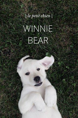 WINNIE BEAR | le petit chien |