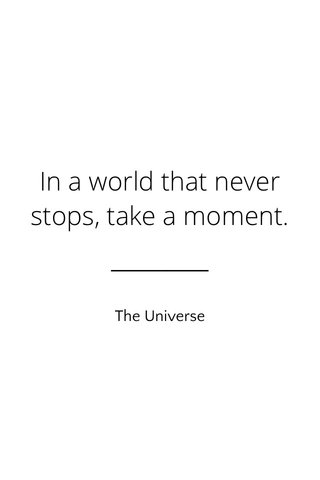 In a world that never stops, take a moment. The Universe