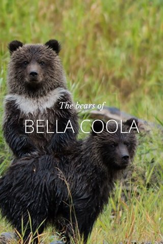 BELLA COOLA The bears of