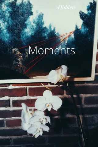 Moments Hidden