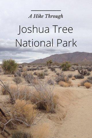 Joshua Tree National Park A Hike Through