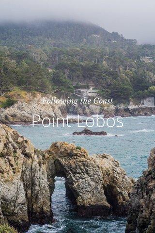 Point Lobos Following the Coast