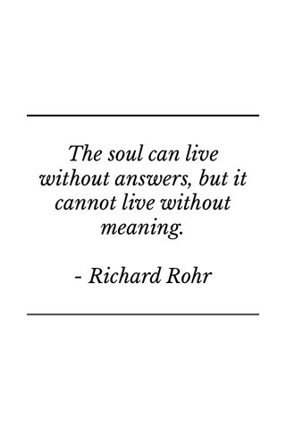 The soul can live without answers, but it cannot live without meaning. - Richard Rohr