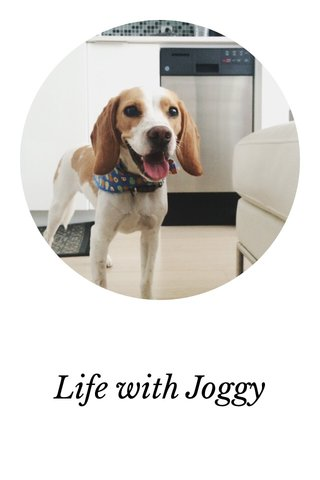Life with Joggy