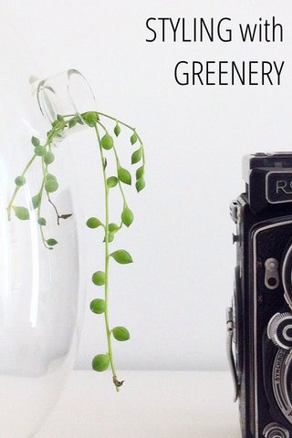 STYLING with GREENERY