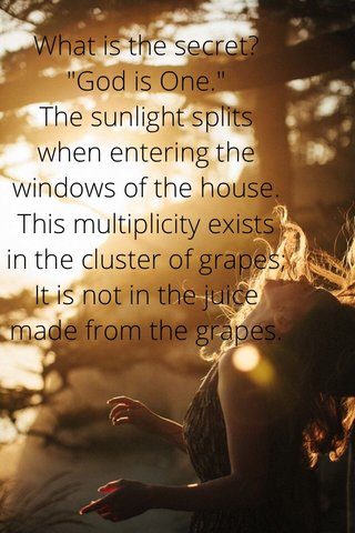"""What is the secret? """"God is One."""" The sunlight splits when entering the windows of the house. This multiplicity exists in the cluster of grapes; It is not in the juice made from the grapes."""