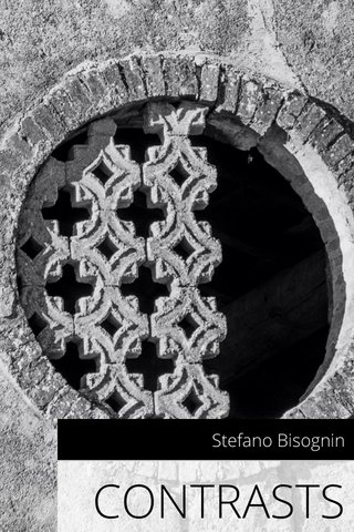 CONTRASTS Stefano Bisognin