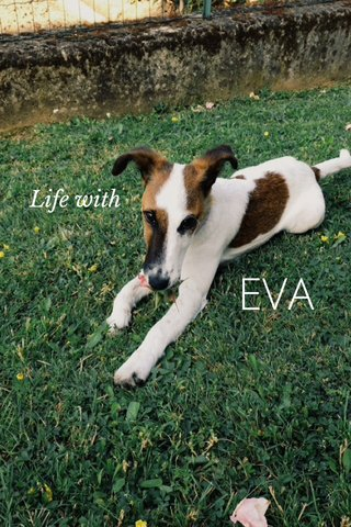 EVA Life with