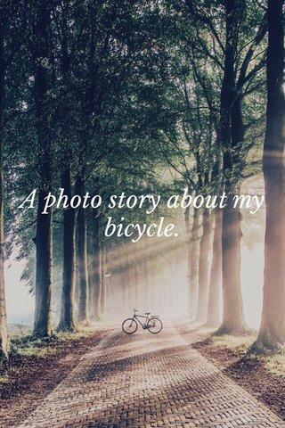 A photo story about my bicycle.