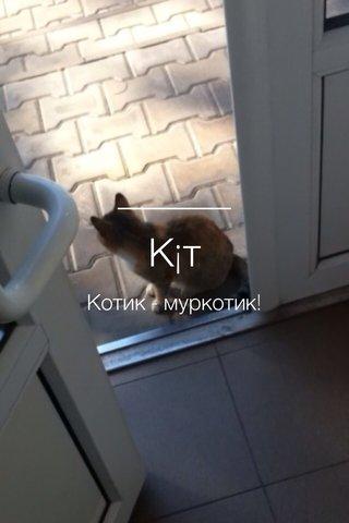 К¡т Котик - муркотик!