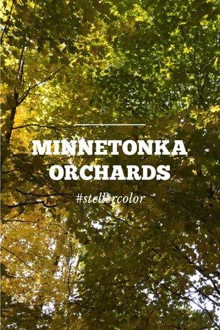 MINNETONKA ORCHARDS #stellercolor