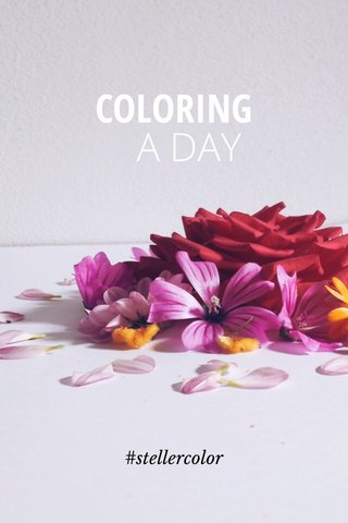 A DAY COLORING #stellercolor