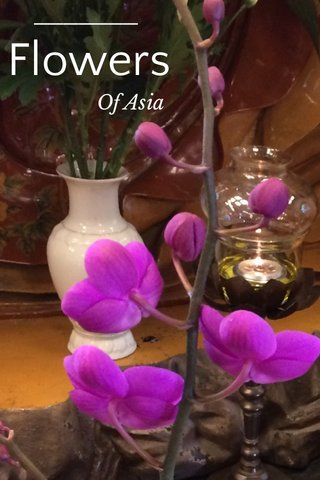 Flowers Of Asia