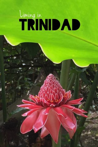 Trinidad Liming in