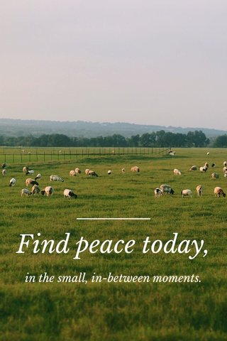 Find peace today, in the small, in-between moments.