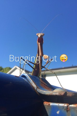 Bugging Out 😜