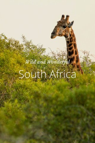 South Africa Wild and Wonderful