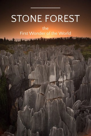 STONE FOREST the First Wonder of the World