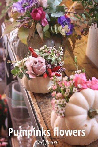 Pumpinks flowers Oui fleurs