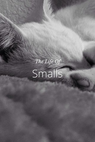 Smalls The Life Of