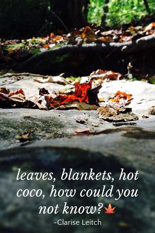 leaves, blankets, hot coco, how could you not know?🍁 ~Clarise Leitch
