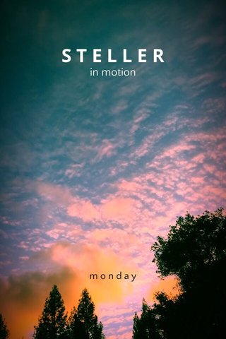 STELLER in motion monday