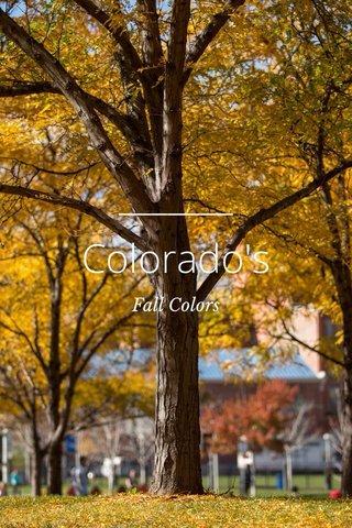 Colorado's Fall Colors
