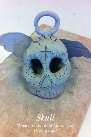 Skull Mexican day of the dead skull Drying out!!