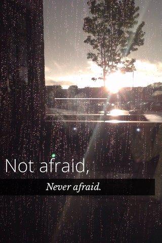 Not afraid, Never afraid.