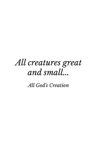 All creatures great and small... All God's Creation
