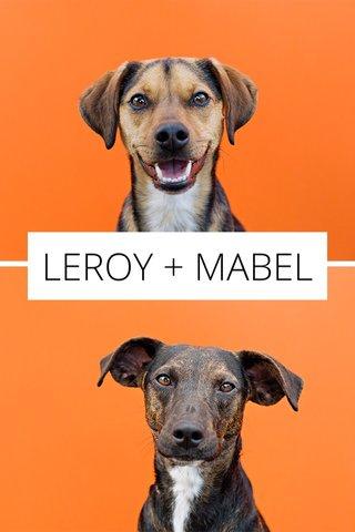 LEROY + MABEL