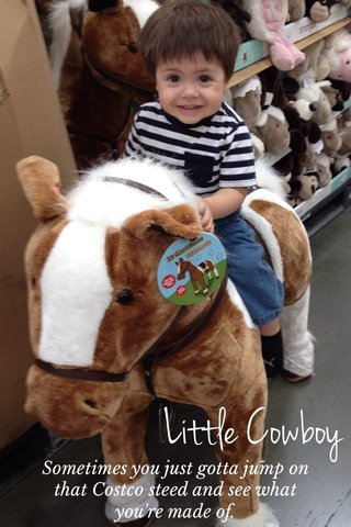 Little Cowboy Sometimes you just gotta jump on that Costco steed and see what you're made of.