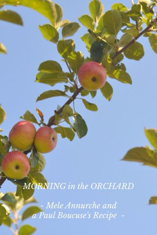 MORNING in the ORCHARD - Mele Annurche and a Paul Boucuse's Recipe -