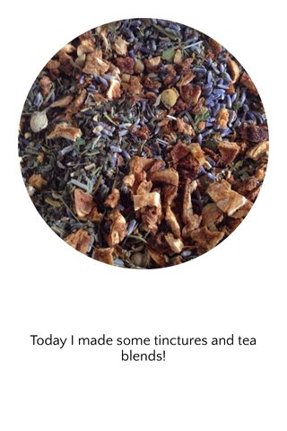 Today I made some tinctures and tea blends!