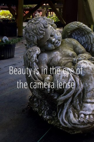 Beauty is in the eye of the camera lense