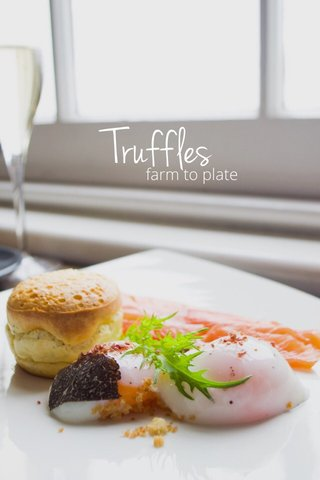 Truffles farm to plate