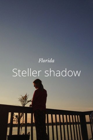 Steller shadow Florida