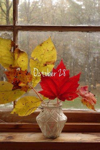 October 28