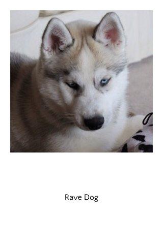 Rave Dog