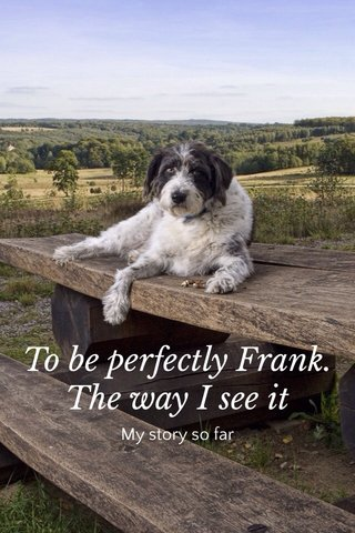 To be perfectly Frank. The way I see it My story so far